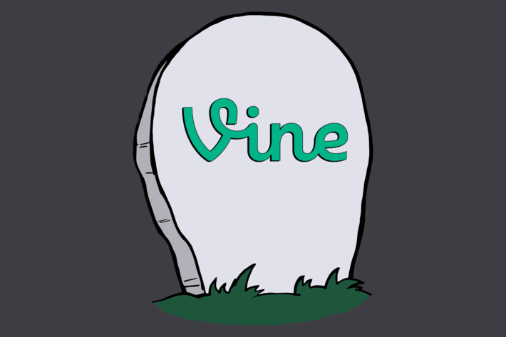 The End of an Era: The Death of Vine