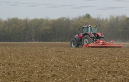 cultivating grove field