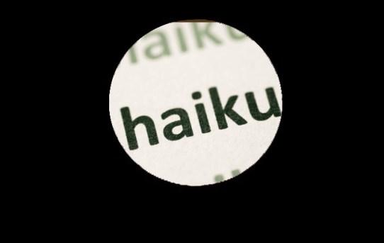 Haiku Fun