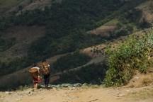 キャベツ畑で収穫のお手伝いしている少女たち。