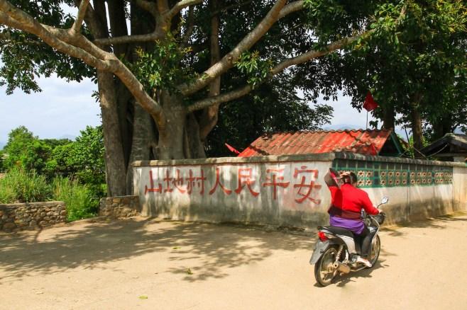 いたるところに点在する中国村。