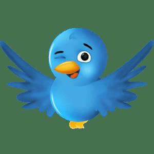 Twitter bird winking