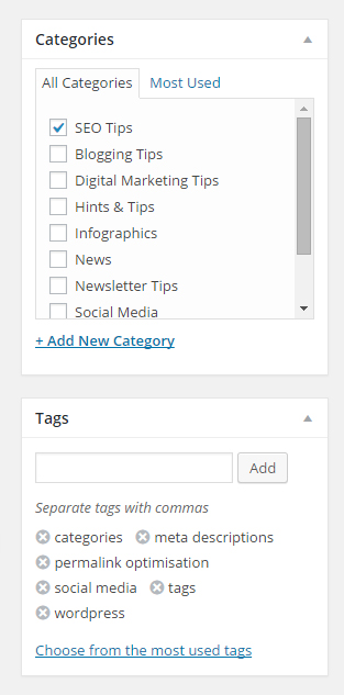 Screen shot of categories and tags for SEO blog posts