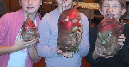 beets of Boulonnais France for la nuit des grimaçantes betteraves