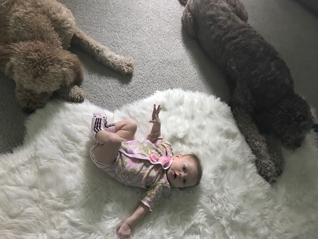 Two Months of Humbling Parenthood