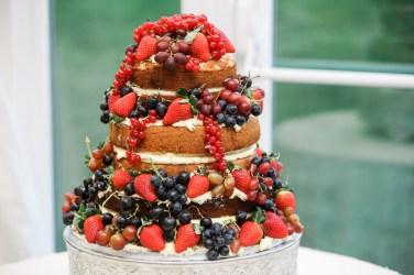 Swansea Oldwalls Gower Wales Wedding-513
