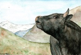 cow art