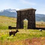 Montana à Las Vegas : bilan complet d'un roadtrip de 14 jours