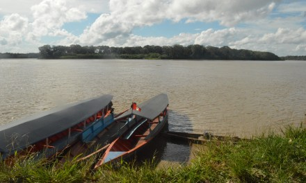 Amazonie Péruvienne, au coeur de Puerto Maldonado