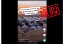 虛假:影片中被丟棄的並非美國大選投給特朗普的郵寄選票 而是過期雞肉