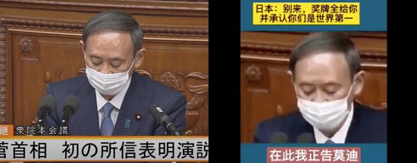 Comparison of the original and fabricated subtitles - Suga