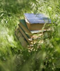 books-sunshine