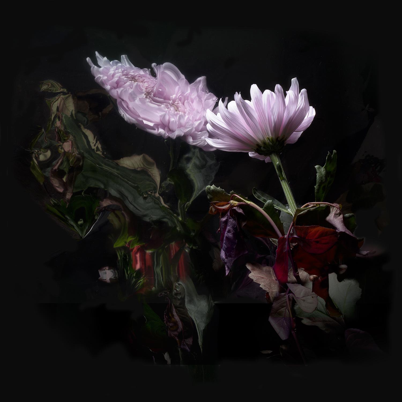 Lo Moon Loveless 5×5 300 dpi RGB