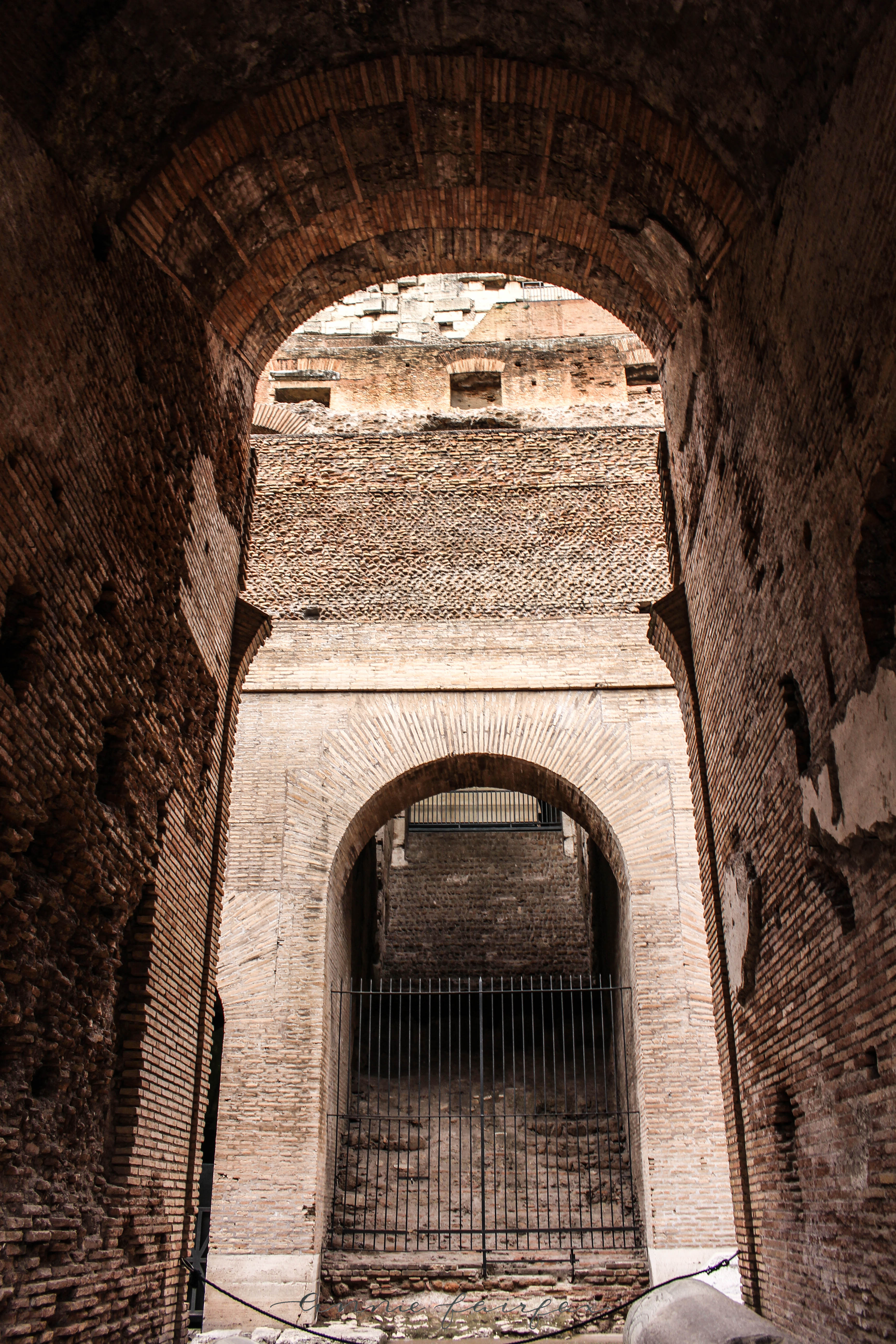 Ruins of the Roman Colosseum Rome Italy by Annie Fairfax