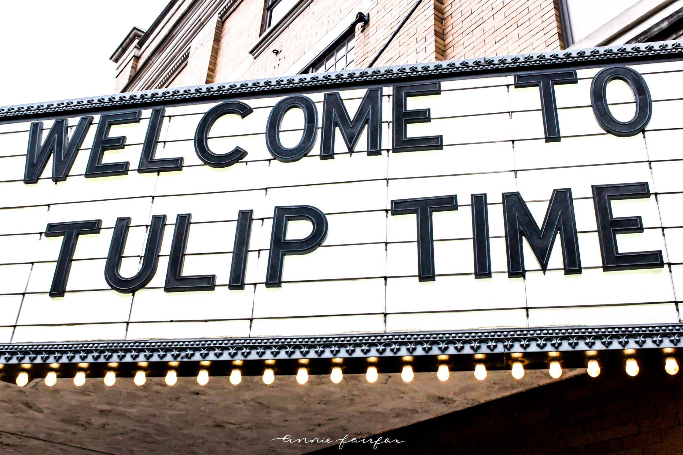 Welcome to Tulip Time Festival