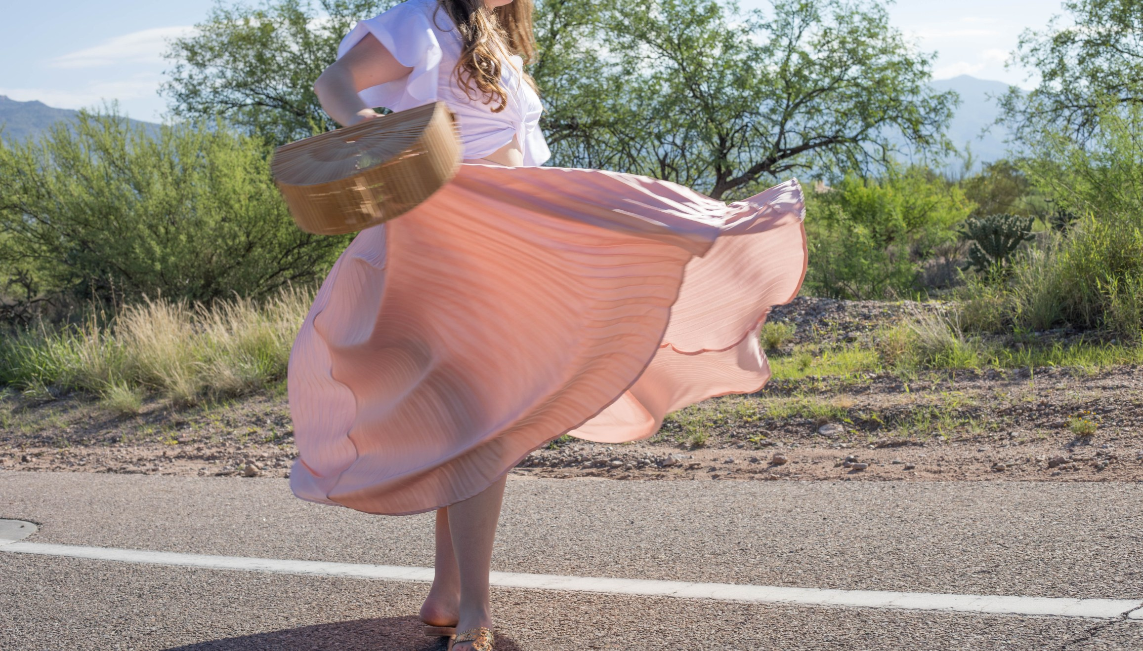 Blush Pink Pleated Maxi Skirt