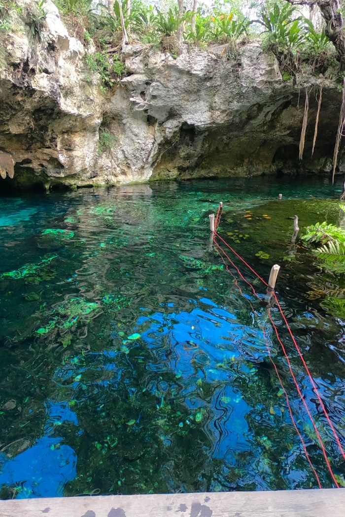 Everything You Need to know Before Visiting Gran Cenote in Tulum