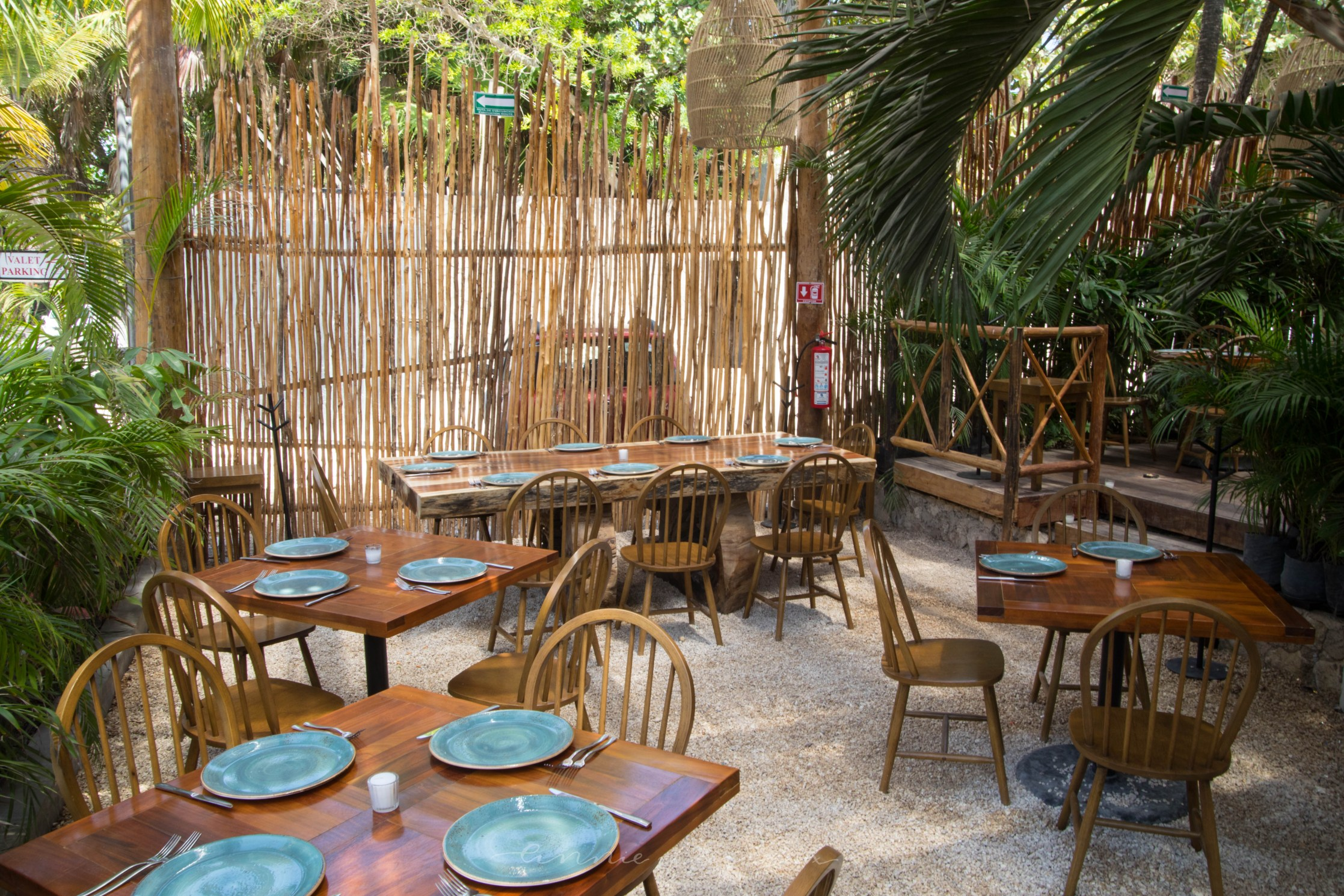 Luxury Restaurants of the World: Rosa Negra Tulum Riviera Maya Mexico Latin American Cuisine