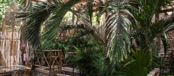 Luxury Restaurants of the World: Rosa Negra Tulum