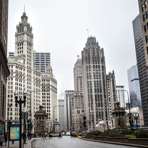 Chicago: The Ultimate Travel Guide
