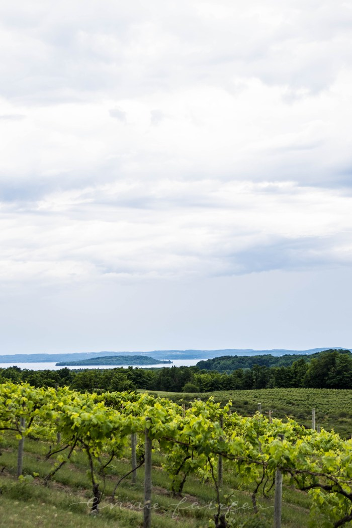 Traverse City: The Official Travel Guide