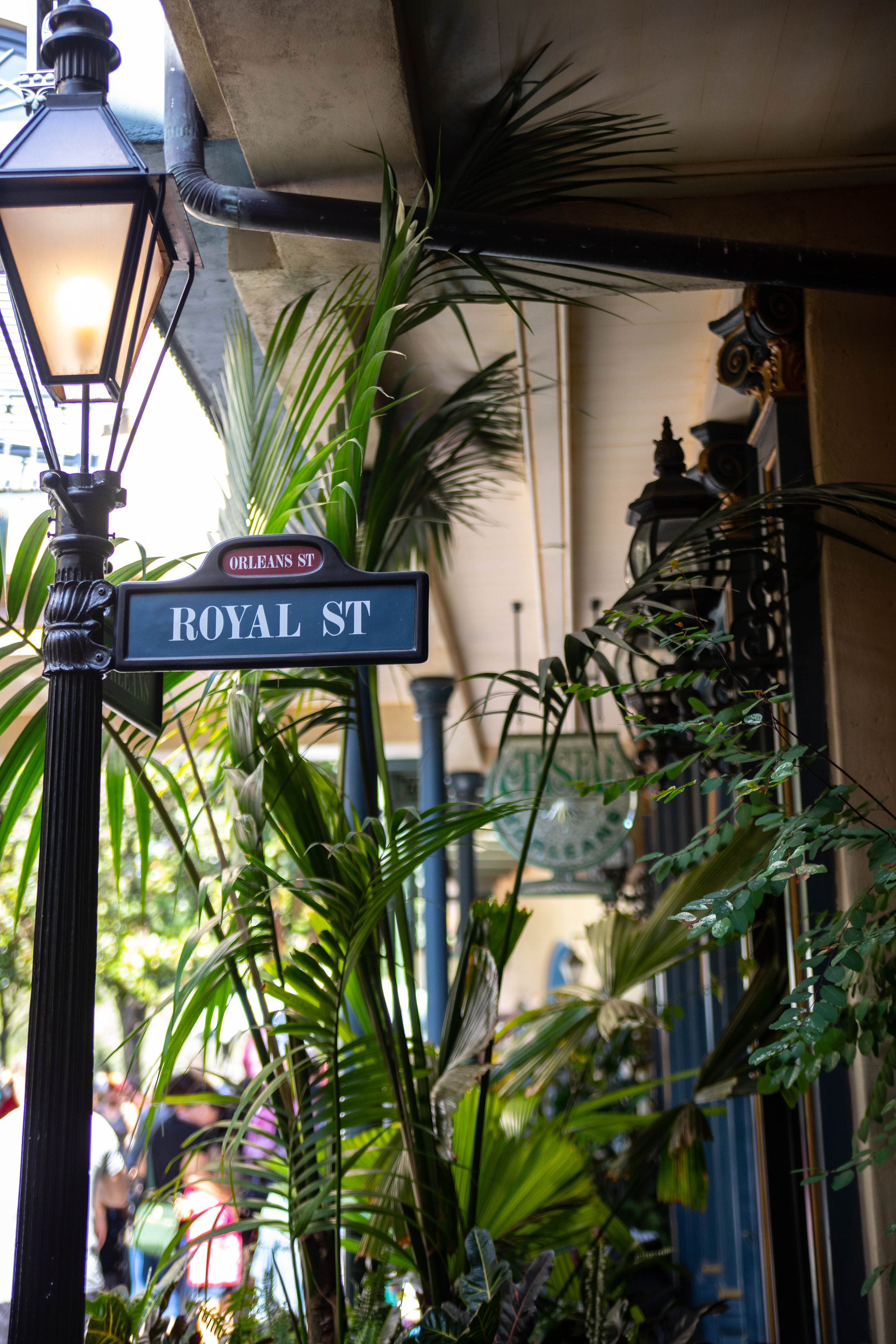 Disneyland The Ultimate Travel Guide by Annie Fairfax Disneyland Travel Tips Advice New Orlean's Square Royal St.