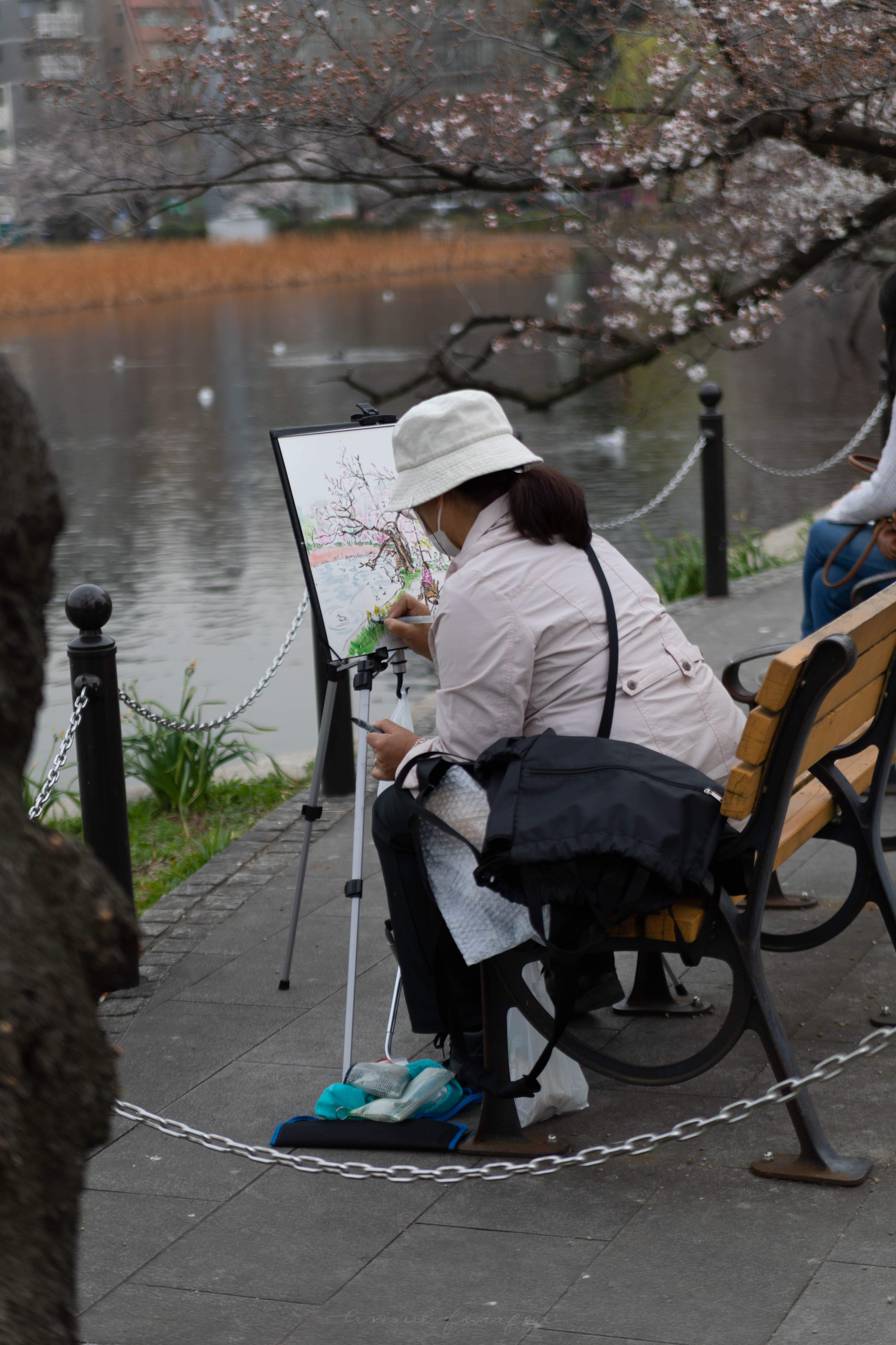 Woman Painting Cherry blossoms in Tokyo Park by Annie Fairfax