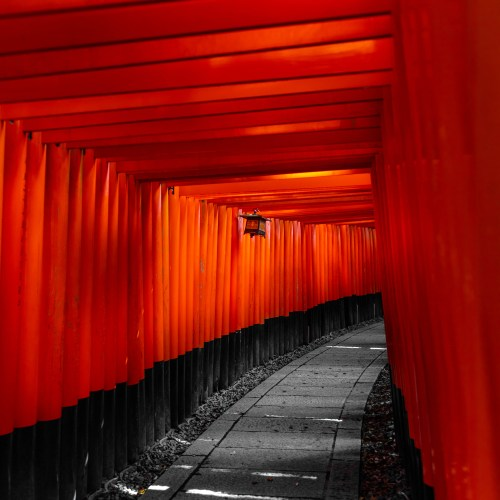 Visiting Fushimi Inari Taisha Shrine in Kyoto, Japan