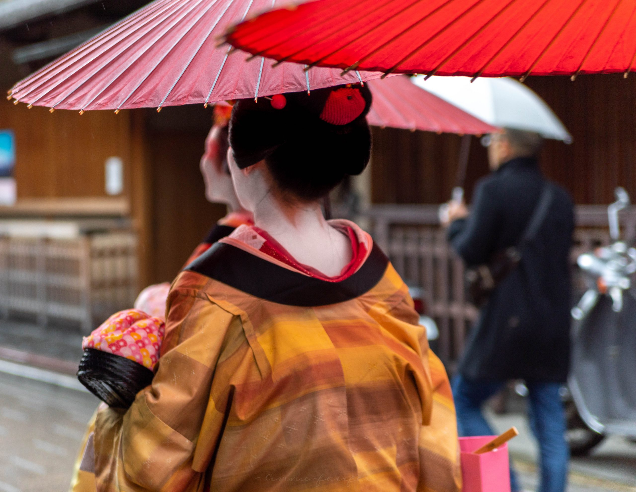Geisha in Kyoto Photographed by Annie Fairfax Travel Guide to Kyoto
