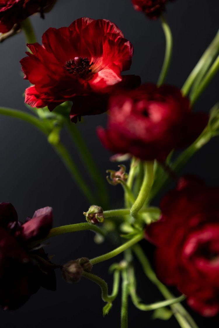Terrain's Fresh Ranunculus Bouquet