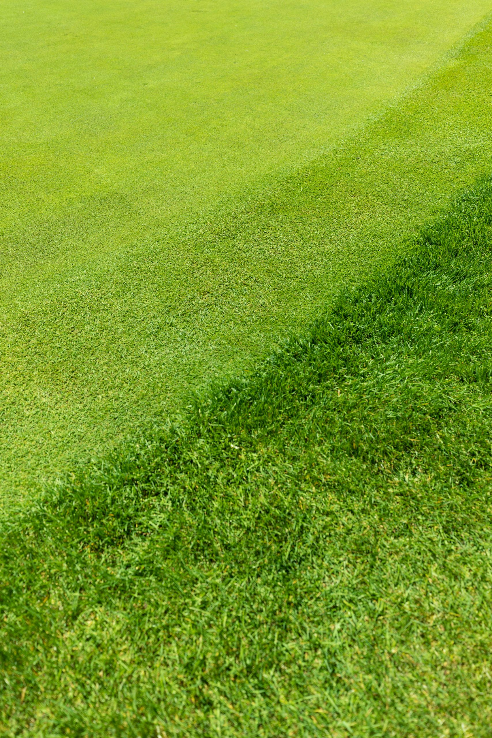 Ombre Putting Greens Golfing at Bay Harbor Golf Club in Northern Michigan by @AnnieFairfax