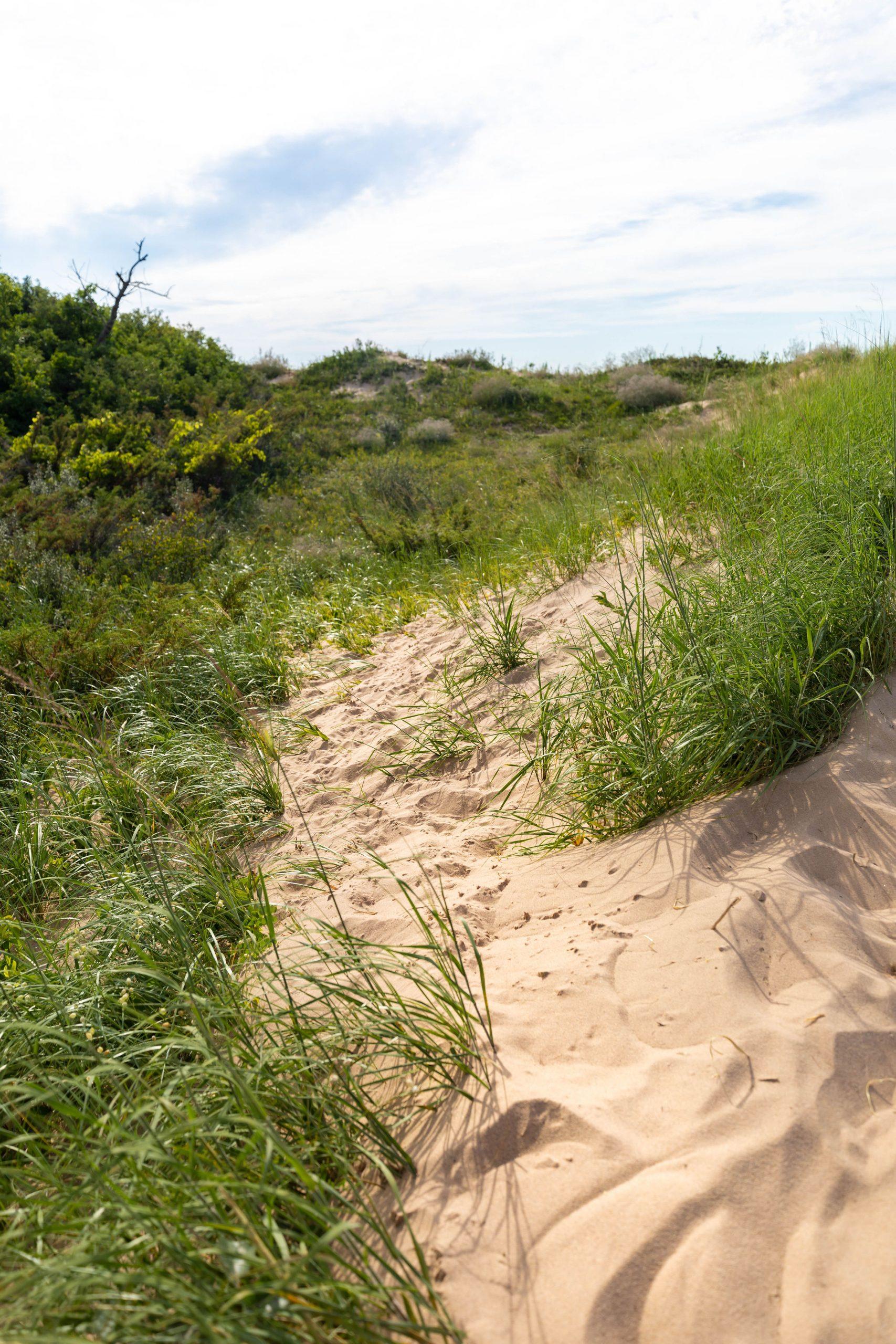 Sleeping Bear Dunes National Lakeshore by Annie Fairfax