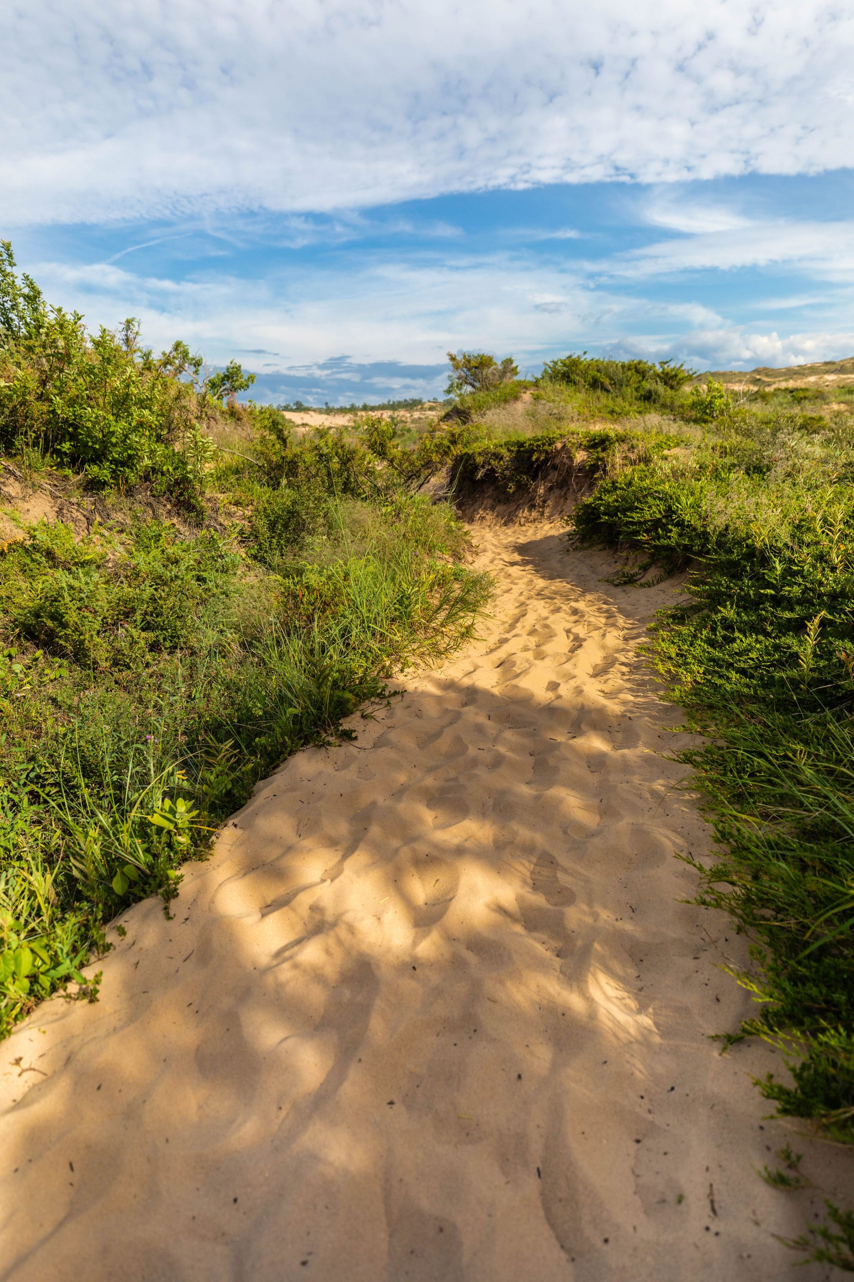 Hiking the Paths at Sleeping Bear Dunes National Lakeshore Incredible Hiking, Swimming, and Birding Most Beautiful Place in America by Annie Fairfax