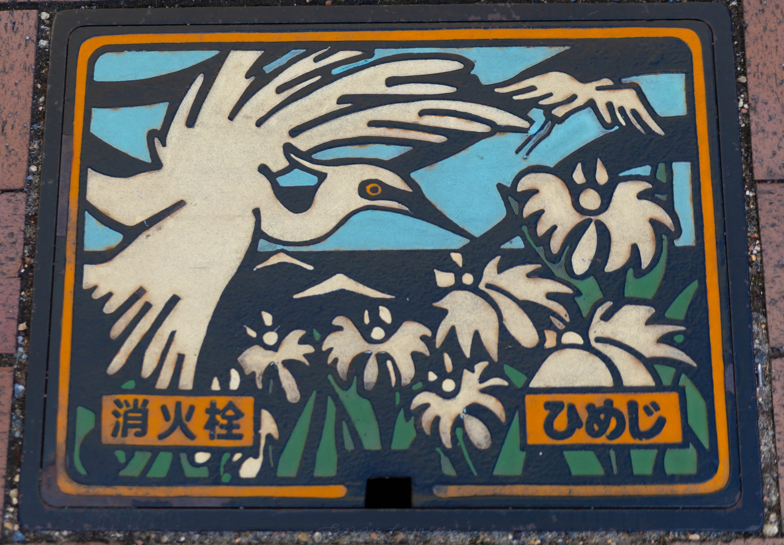 White Heron on Sewer Grate Near Himeji Castle Cherry Blossom Season in Hemeji Japan by @AnnieFairfax