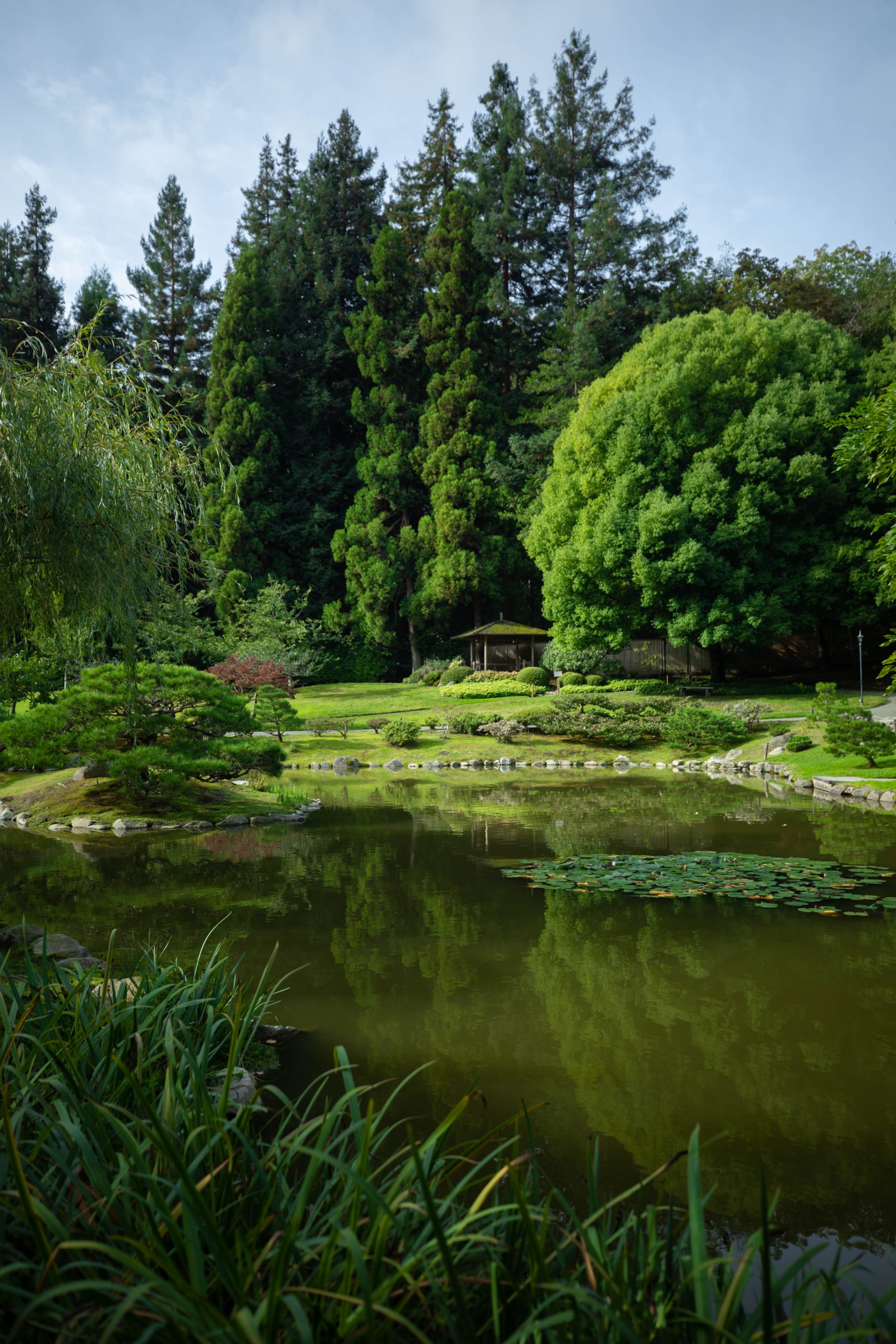 Stone Bridge at Seattle Japanese Garden in Washington Pacific Northwest by Annie Fairfax