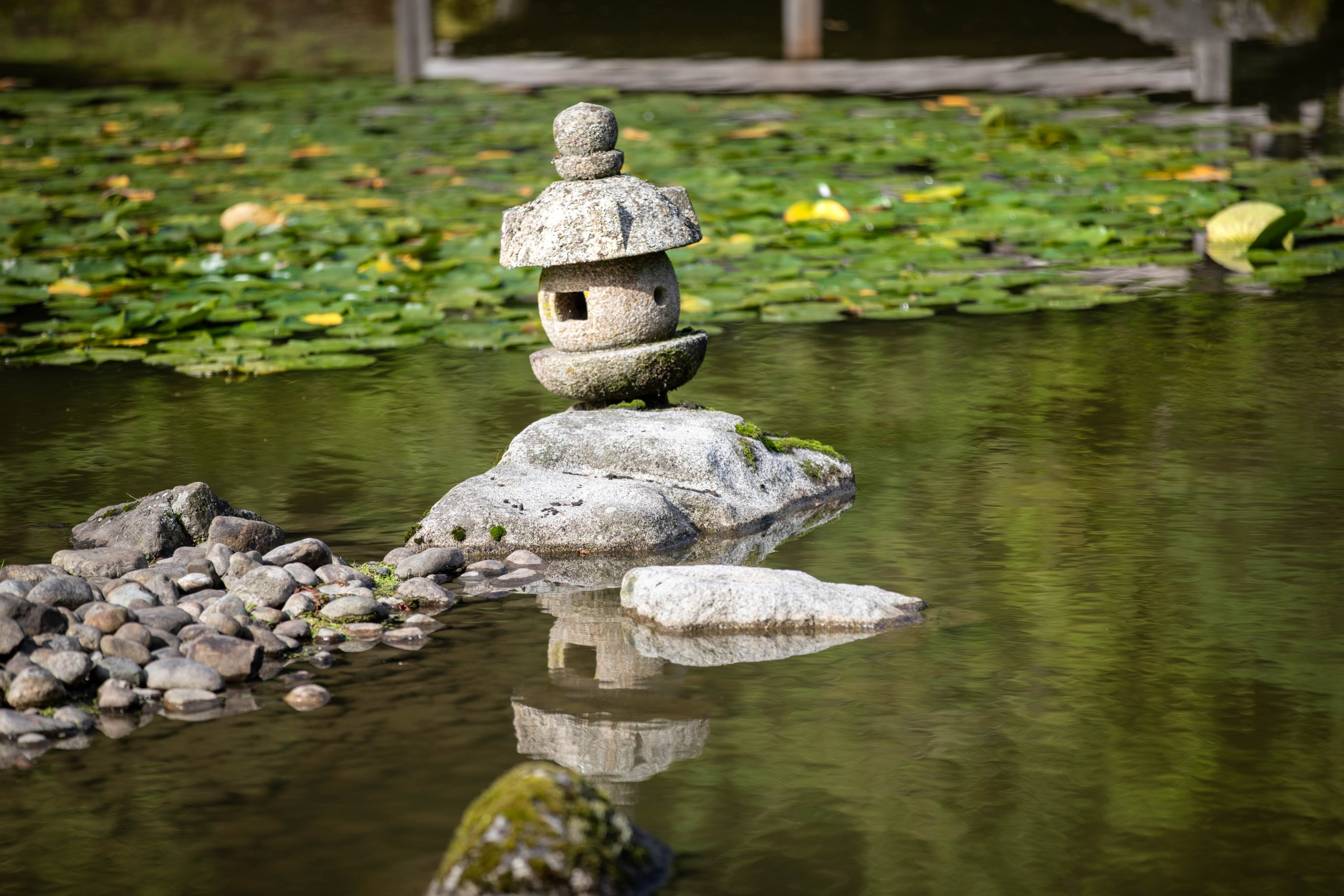 The Seattle Japanese Garden in Washington Pacific Northwest by Annie Fairfax