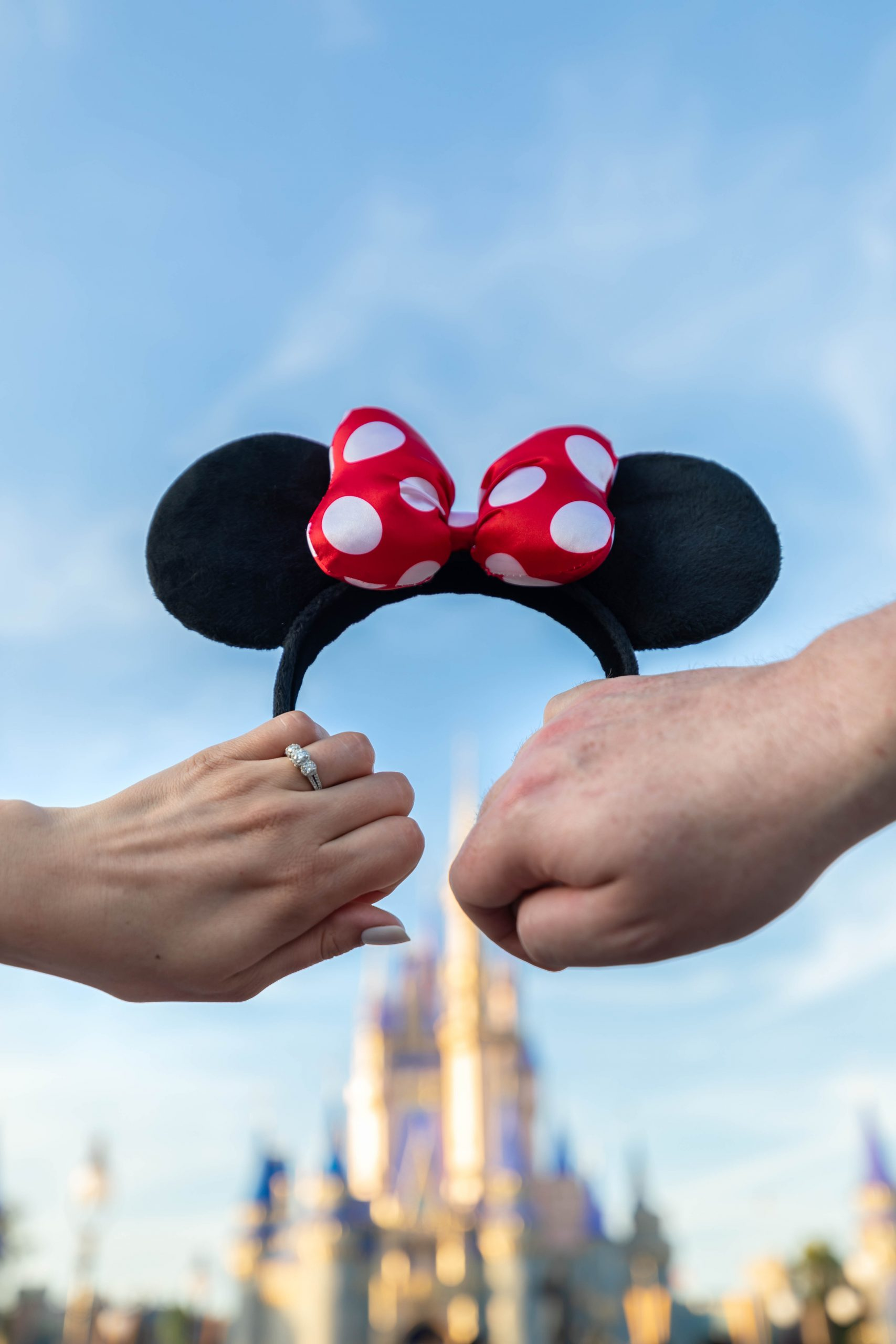 Congratulations Jamie & Shane! Walt Disney World Engagement Custom Shirts Waldorf Astoria Orlando Celebration by Annie Fairfax
