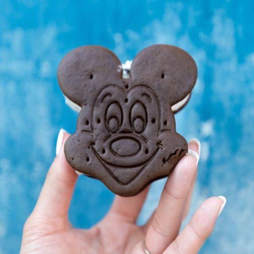 Mickey Shaped Ice Cream Sandwich at Animal Kingdom Walt Disney World near Orlando Florida by Annie Fairfax