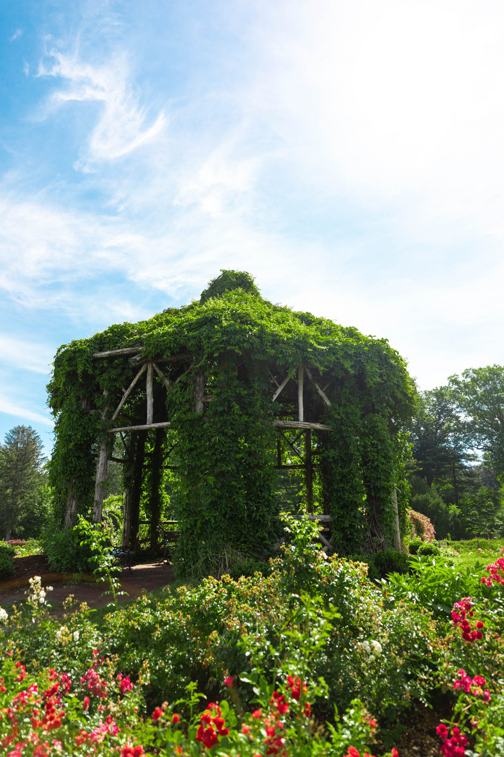 Rustic Summer House Gazebo at The Helen S Kaman Rose Garden within Elizabeth Park in Hartford, Connecticut Photographed by Annie Fairfax