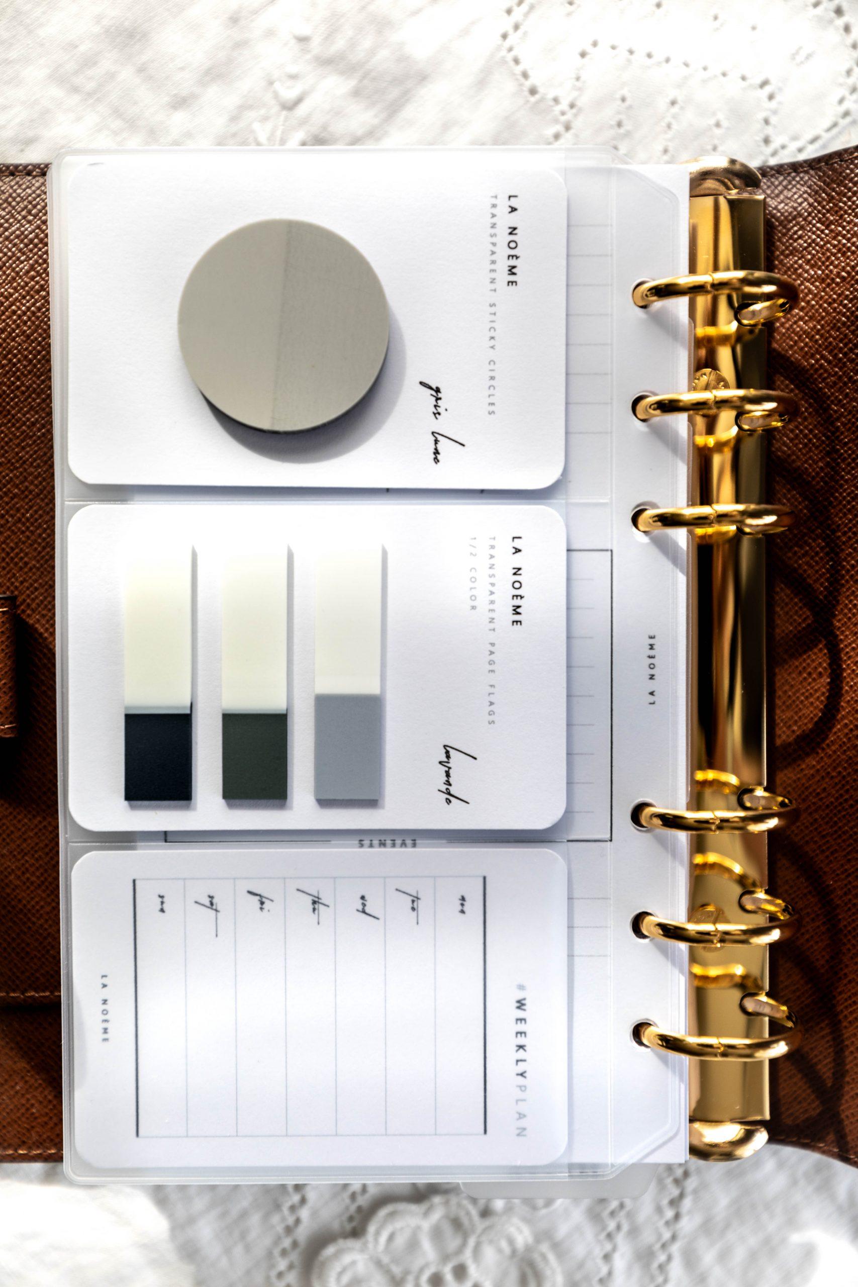 Louis Vuitton Agenda Setup Plastic Dashboard Pages with 3 Card Holder Slots Annie Fairfax