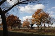 White House Park
