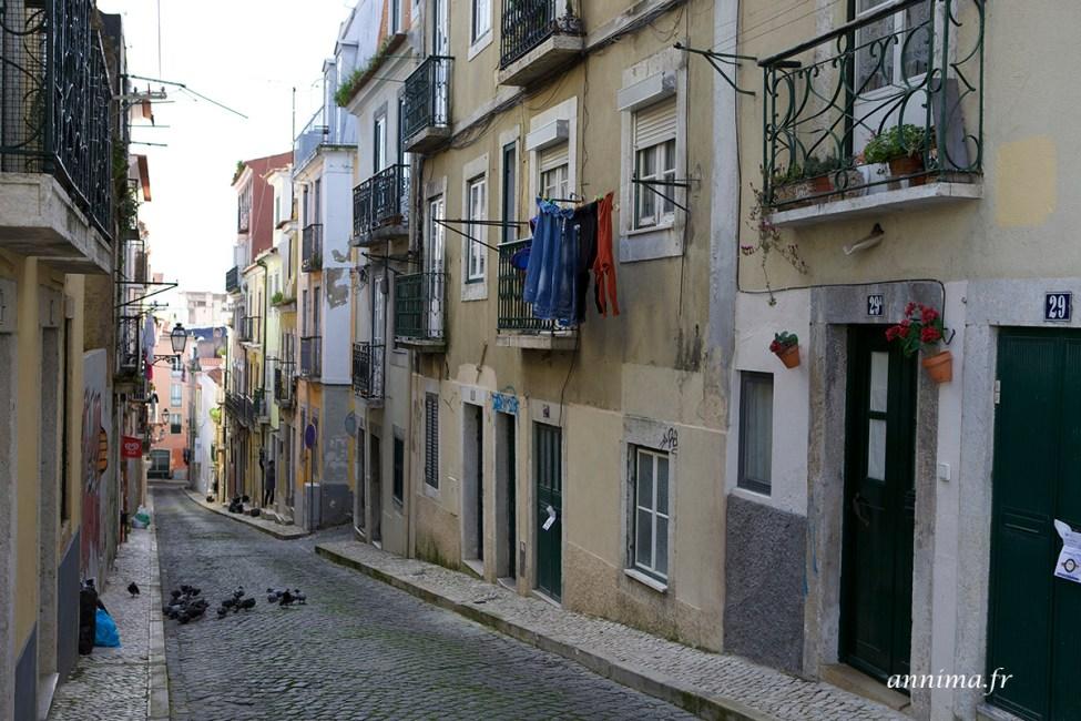 Lisbonne-3jours16