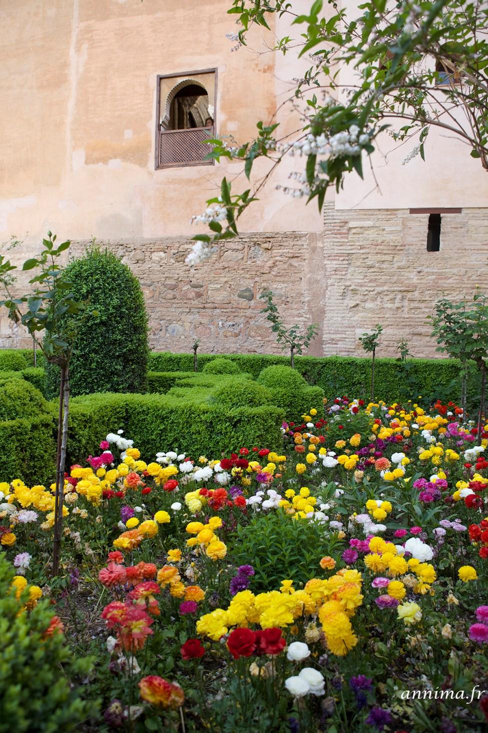Alhambra23
