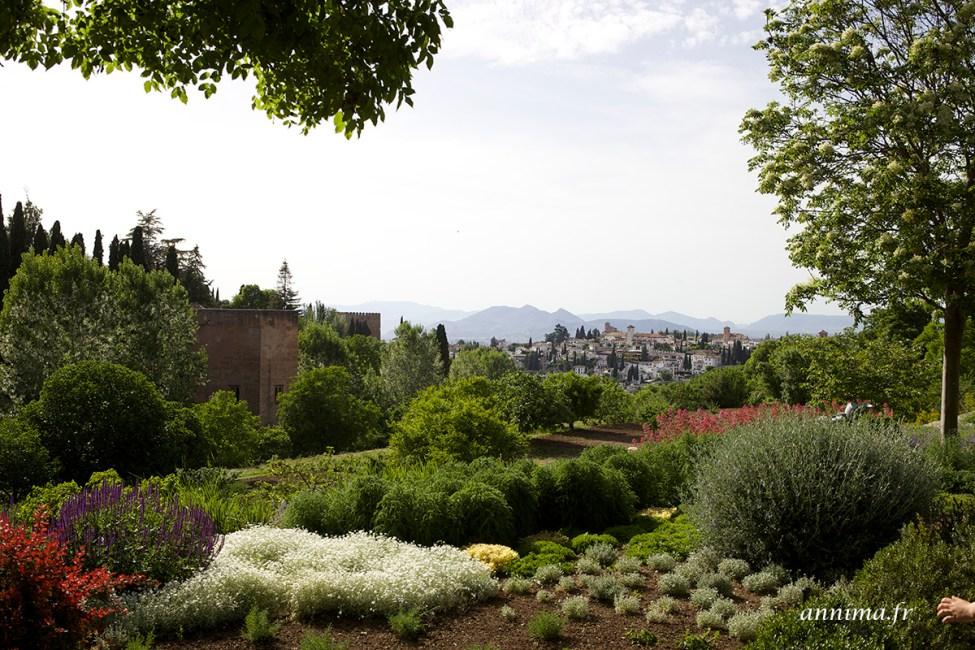 Alhambra26