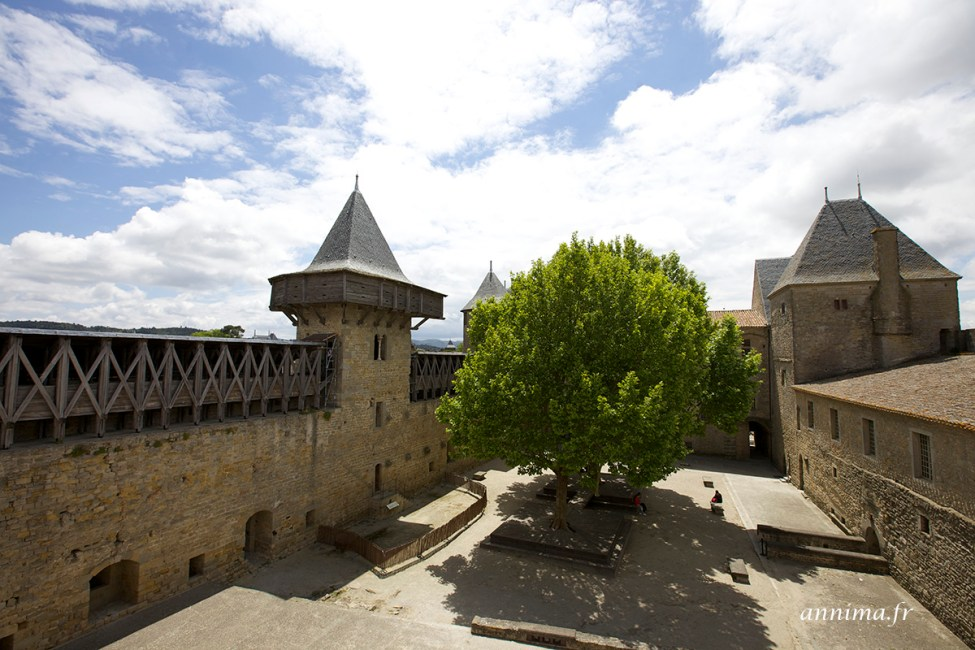chateau-carcassonne16