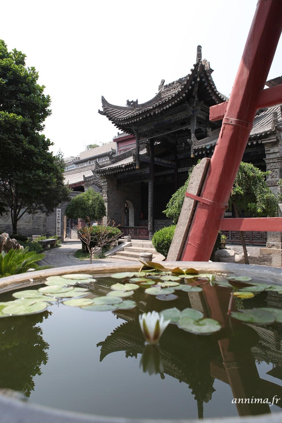 Xi'an33
