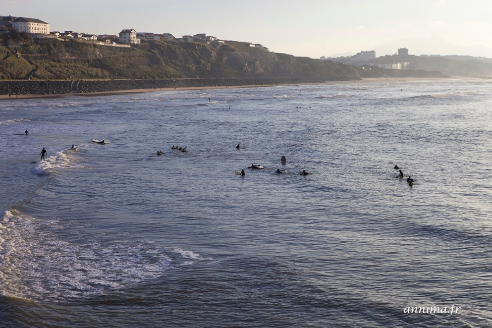 Biarritz-surf7