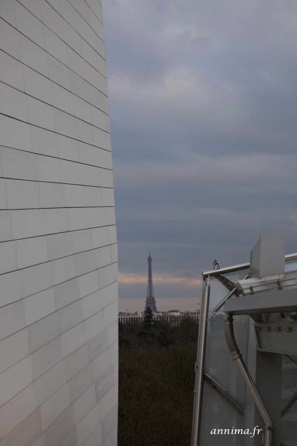 Fondation_Vuitton20