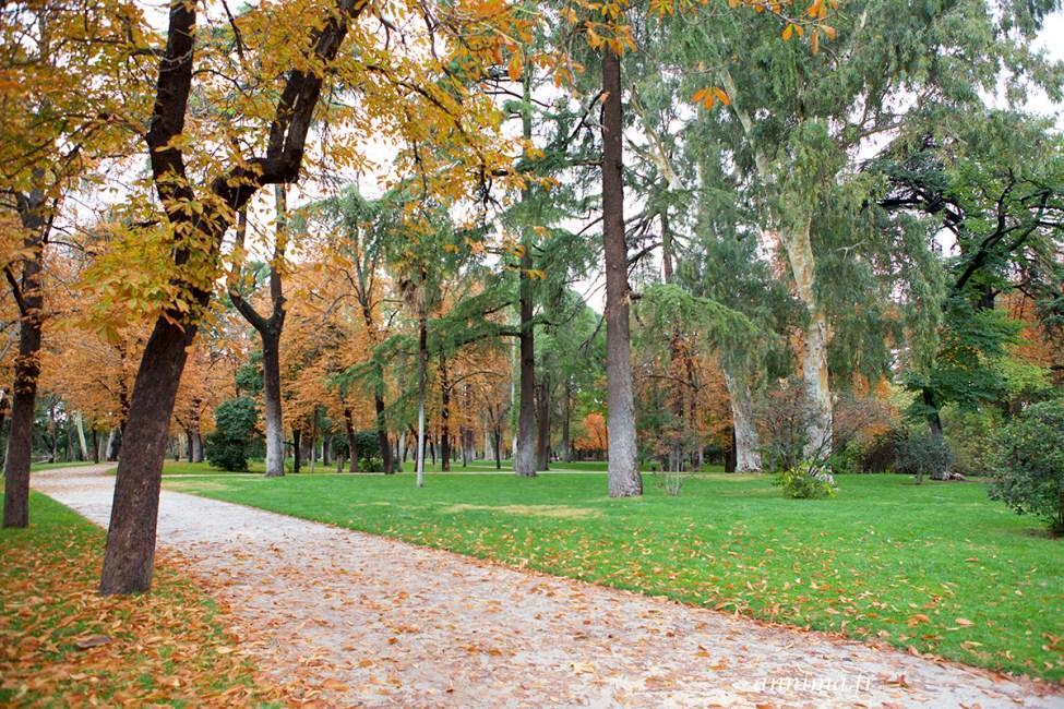 Parque del buen retiro4