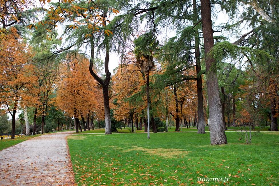 Parque del buen retiro5
